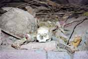 Bones near St. George church. Lalibela. Ethiopia.