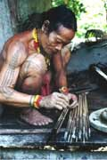 Poison arrows making. Siberut island. Indonesia.