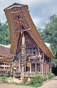 Traditional house tongkonan, Tana Toraja area. Sulawesi, Indonesia.