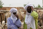Local men at cattle market at Agadez town. Niger.