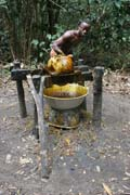 Palm oil pressing. Lobe River. Cameroon.