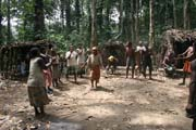 Traditional dance at Pygmy village down to the Lobe River. Cameroon.