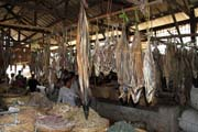 Dry fishes - fish market, Sittwe town. Myanmar (Burma).
