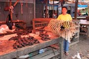 Bats (flying fox), market at Tomoho village. Sulawesi,  Indonesia.