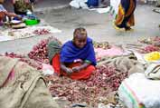 At the market at Dire Dawa. Ethiopia.