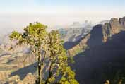 Simien mountains. Around Sankaber camp. Ethiopia.