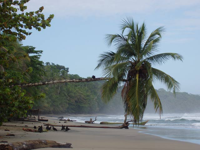 Beach at Manzanillo. Costa Rica.