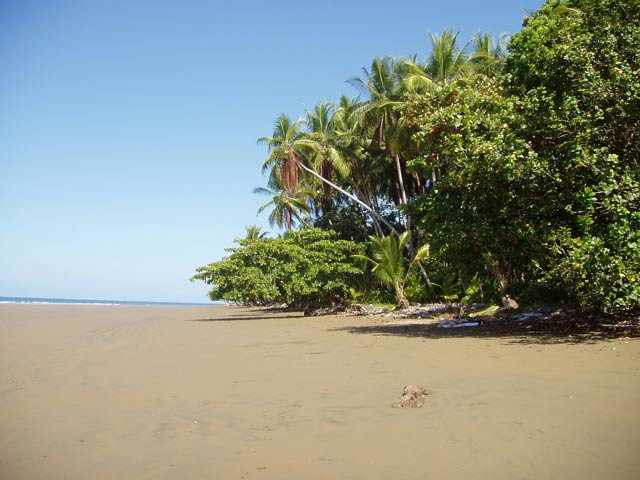 Beach Uvita. Costa Rica.