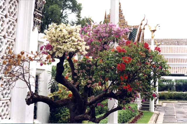 Bangkok. Royal Palace. Thailand.