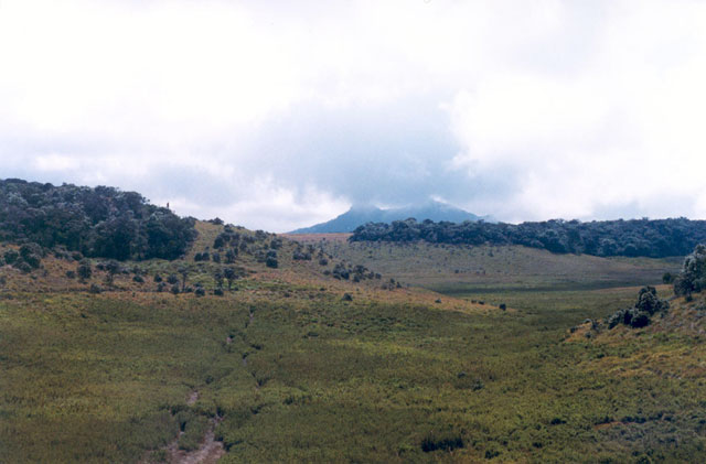 Horton Plains national park. Sri Lanka.