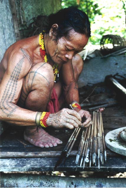 Poison arrows making. Siberut island. Sumatra,  Indonesia.