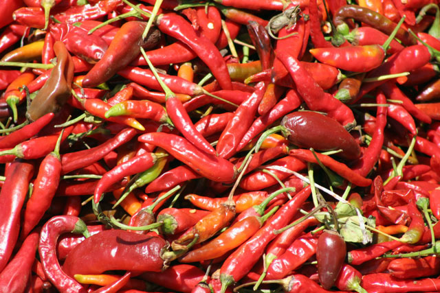 Chilli, Chencha market. South,  Ethiopia.