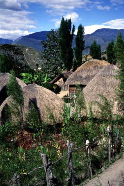 Traditional village of Dani tribe. South part of Baliem Valley. Papua,  Indonesia.