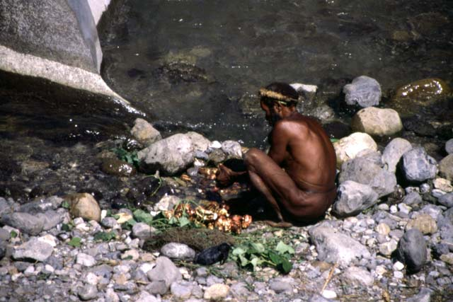 Sweet potatos washing. Papua,  Indonesia.