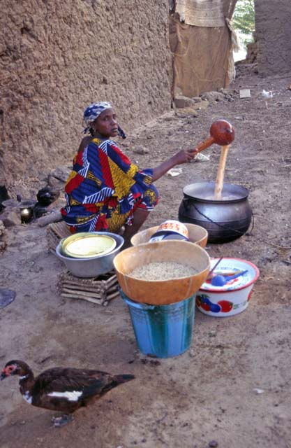 Food making at small village on the bank of Niger river. Mali.