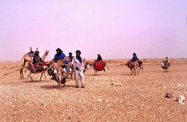 Tuaregs on the way to reach new place for living. Sahara desert. Mali.