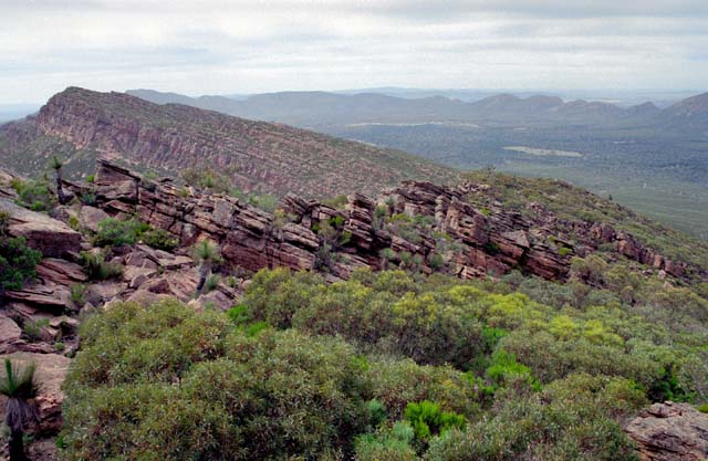Flinders Ranges national park. Australia.