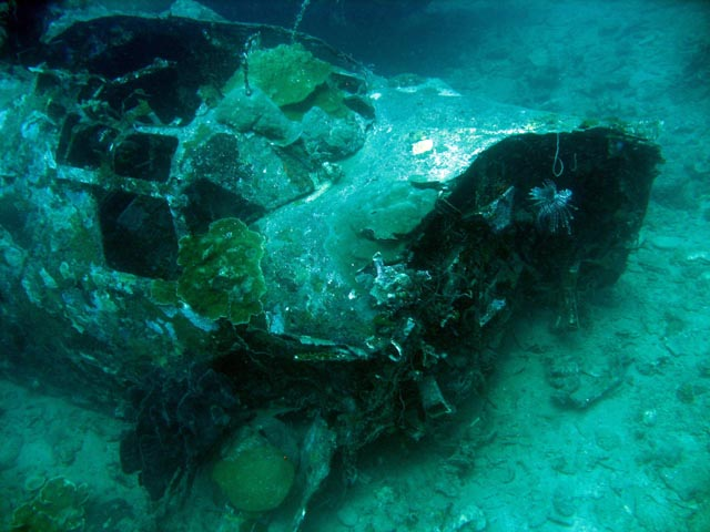 Diving around Togian islands, Kadidiri, plane wreck B24 from the 2nd World War sunken on Mai 3rd, 1945. Sulawesi,  Indonesia.