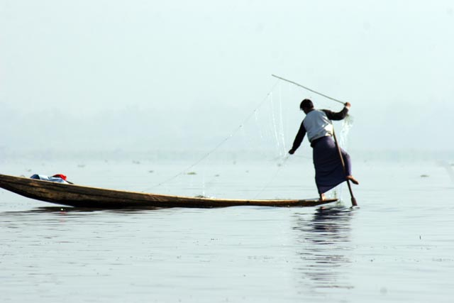 Traditional fishing, Inle Lake. Myanmar (Burma).