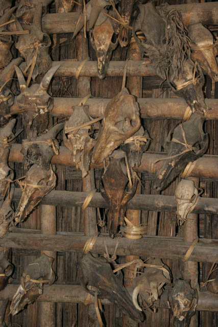 Hunters trophies as house decoration. Kyartho village, Chin State. Myanmar (Burma).