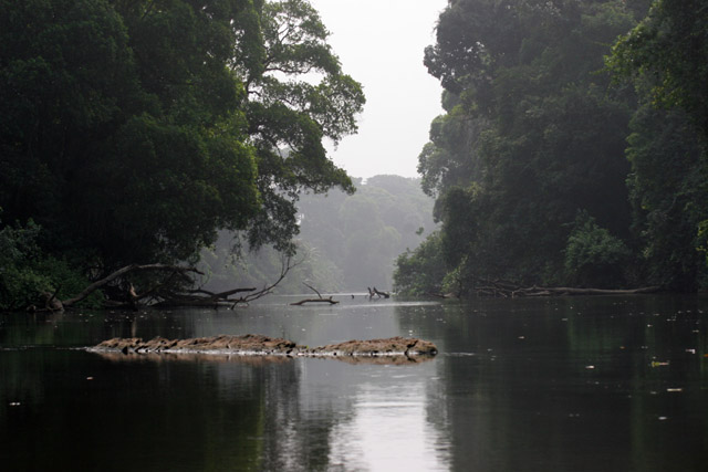 Lobe River. Cameroon.