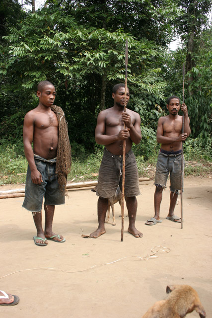 Pygmy hunters, village down to the Lobe River. The Pygmy people are gatherers and hunters. They hunt animals such as antelopes, pigs and monkeys, and also gather honey, wild yams, berries and other plants. Cameroon.