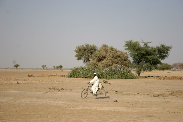 On the way to the Lake Chad. Cameroon.