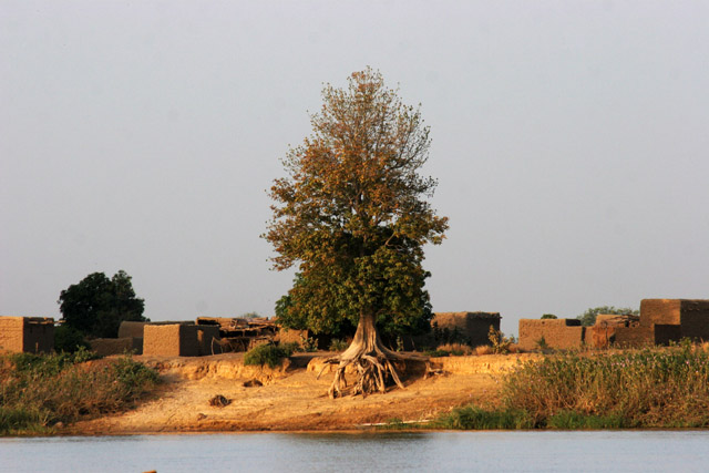 Chari river makes a border between Cameroon and Chad. Lake Chad area. Cameroon.