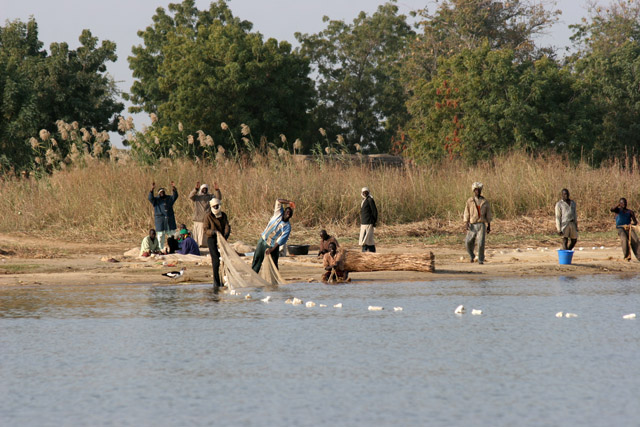 Fishermen. Lake Chad area. Cameroon.