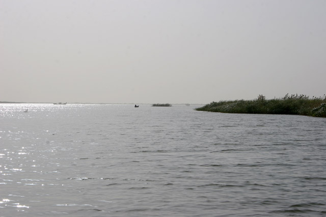 Entry of Chari river and view to the Lake Chad. Cameroon.