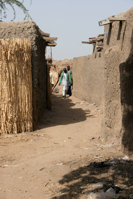 Kofia village at Lake Chad. Cameroon.