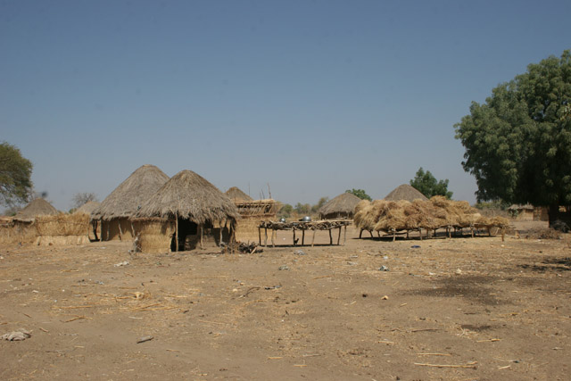 Local village behind Waza National Park gate direction to the Maga village. Cameroon.