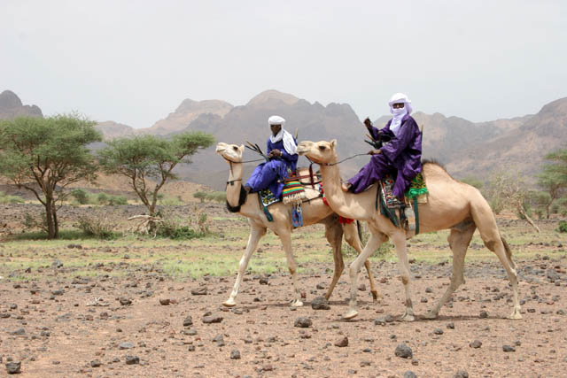 Tuaregs still travel on the camels. Air Mountain area. Niger.