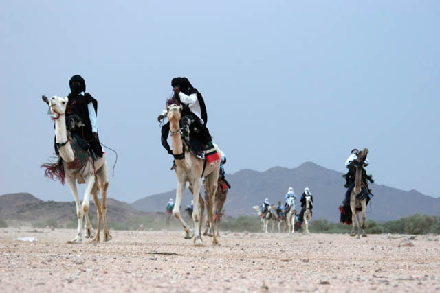 Camel race at traditional tuareg wedding party. Air Mountain area. Niger.
