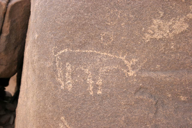 Historical paintings at Sahara desert at Zarzen area. They show typical African animals which lived there many years ago when enough grass and water was here. Niger.