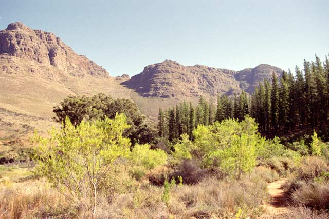 Cederberg Wilderness Area. South Africa.