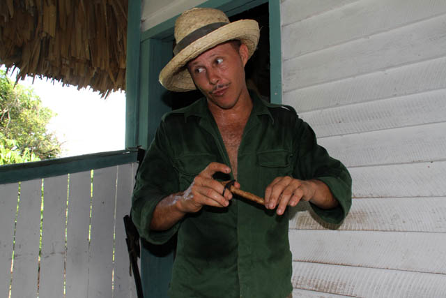 Cigar is almost ready, tobacco farm, Vinales valley (Valle de Vinales). Cuba.