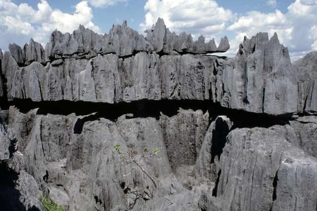 Madagascar - Photos - Asmat.eu