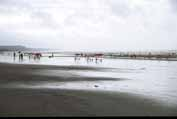 The longest beach at Cox's Bazar. It is along about 30 kilometers. Bangladesh.