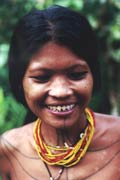 Teeth sharpening - one of the mentawai traditions. Siberut island. Indonesia.
